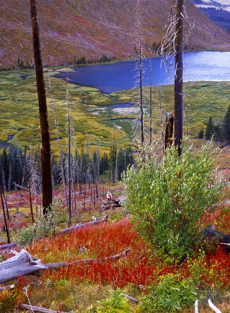 Little Trappers Lake, Flat Tops Wilderness, White River National Forest, Colorado.